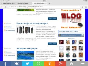 История о моем блоге