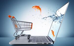 Закон о Интернет магазинах