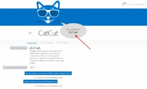 Заработок в Интернете на сайте Catcut