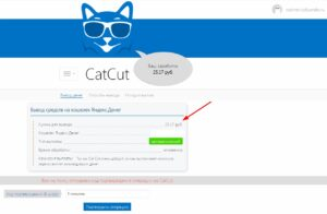 Заработок и вывод денег с Catcut