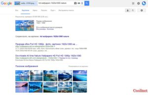 Поиск по картинке, изображению, фото в Гугл по загруженному файлу результат