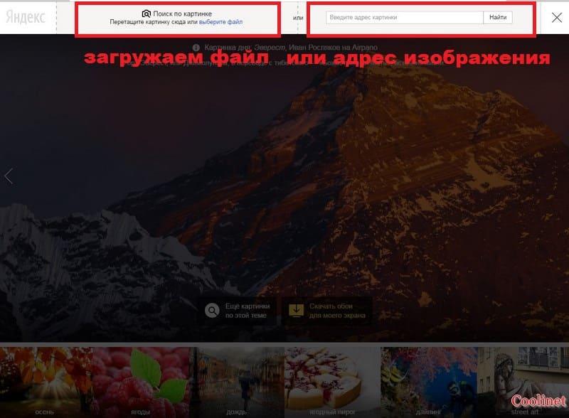 Яндекс поиск по картинке по файлу или по адресу изображения
