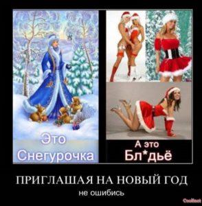 Приглашая на Новый год не ошибись