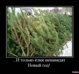 ... И только елки ненавидят Новый год!