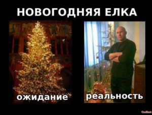 Новогодняя елка. Ожидание и реальность