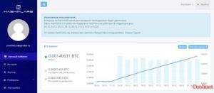 HashFlare общий доход