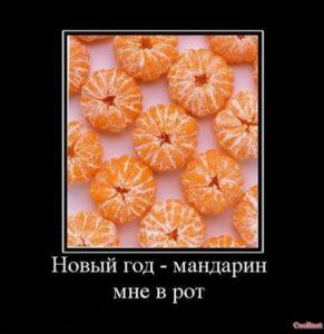 Новый год - мандарин мне в рот