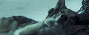 Альфа кадры из фильма