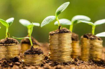 Куда вложить деньги в 2020 – 2021 году?