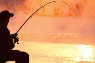 Fishing break отзыв