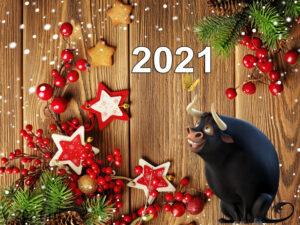 Новый год Быка