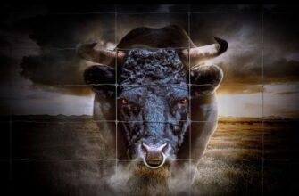 Bullish Global (Бычий глобальный)